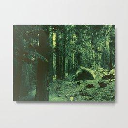 0414 Metal Print