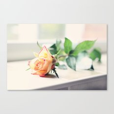 Rose by the Window Canvas Print