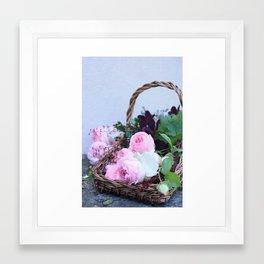garden roses from my mum's garden Framed Art Print