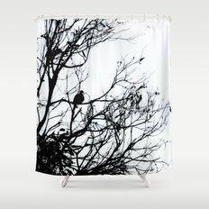 Dove Bird & Winter tree Silhouette Shower Curtain