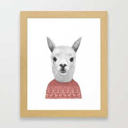 Lama in a sweater Framed Art Print