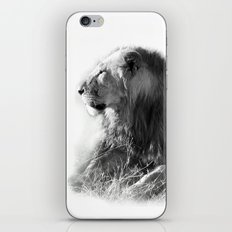 Lion in the Sunshine iPhone & iPod Skin