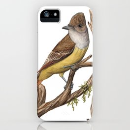 Great Crested Flycatcher (Myiarchus crinitus) iPhone Case