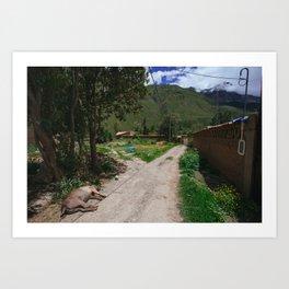 Ollanta Trail Art Print