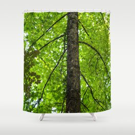 nature arms Shower Curtain