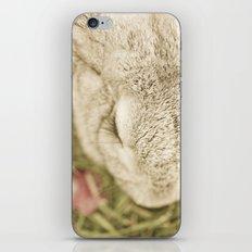 Bunny Lashes iPhone & iPod Skin