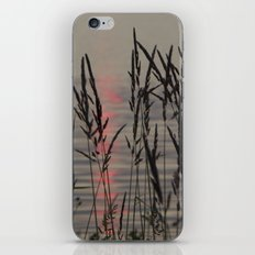 Through the Grass iPhone & iPod Skin
