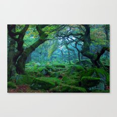 Forest #woods Canvas Print