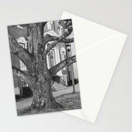The Great Tree Stationery Cards