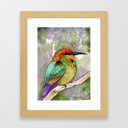 Bee Eater Watercolor bird painting Framed Art Print