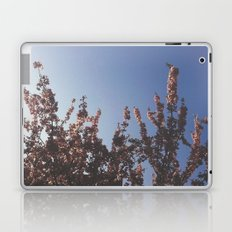 Ever Growing Laptop & iPad Skin