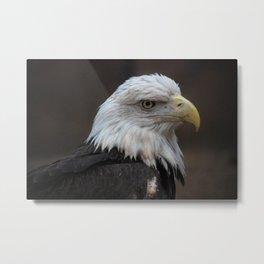 American Spirit Animal Metal Print