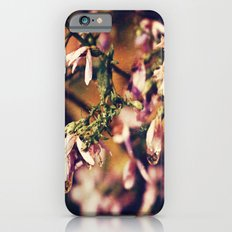 After the Rainstorm iPhone 6s Slim Case