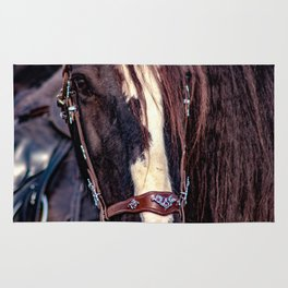 Concept Kaltblutmarkt 2018 : Horse eyes Rug