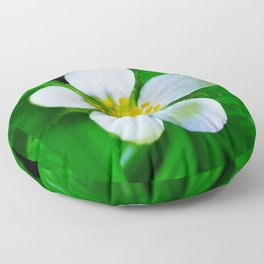 Wild Strawberry Blossom Floor Pillow