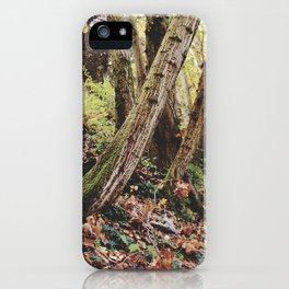 """Tree traces"" iPhone Case"