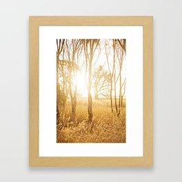 A Bush Sunset Framed Art Print