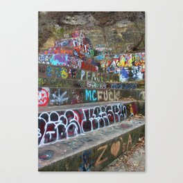 Graffiti in the wild Canvas Print