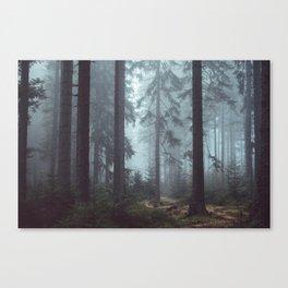 Dreamy Journey Canvas Print