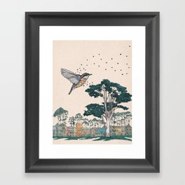 Nuthatch Framed Art Print