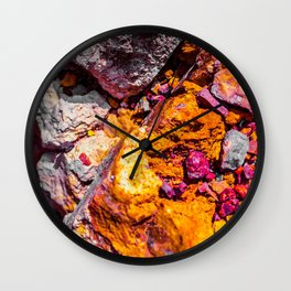lion of the house Wall Clock