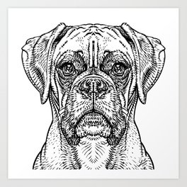 BOXER in black and white Art Print