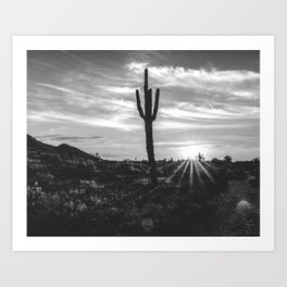 Saguaro Sunrise // Black and White Arizona Desert Landscape Photography Cactus Sun Rays Art Print