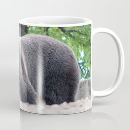 Hey Boo Boo do you want to get some picnic baskets? Coffee Mug