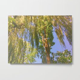 Shining Tree Metal Print