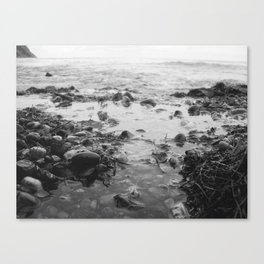 Black and White Sea Canvas Print