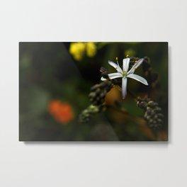 Wildflower at Mavericks Beach - No. 1 Metal Print
