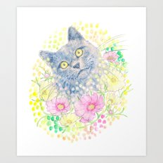 Dreamy Chartreux Cat Art Print