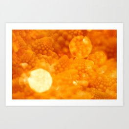 Macro Romanesco Broccoli - Bokeh Gold Art Print