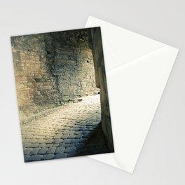Heidelberger Schlöss: Heidelberg, Germany.  Stationery Cards
