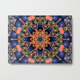 BBQSHOES: Kaleidoscopic Fractal Digital Art Design 1702K Metal Print