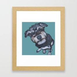 Benji the Schnoodle Framed Art Print