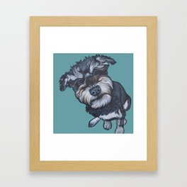 Benji the Schnoodle Framed Art Print