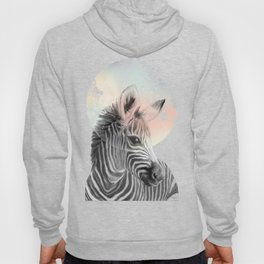 Zebra // Dreaming Hoody
