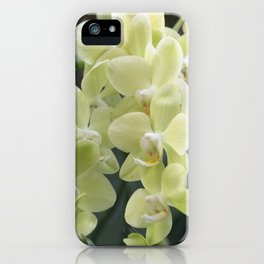 Longwood Gardens Orchid Extravaganza 69 iPhone Case