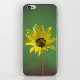 The yellow flower of my old friend iPhone Skin