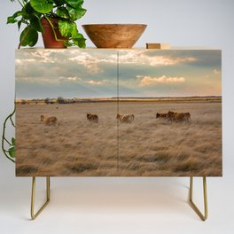 Cows Among the Grass - Cattle Wade Through a Field in Texas Credenza