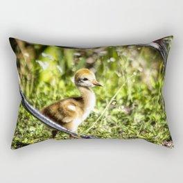 Watchful Eye Rectangular Pillow