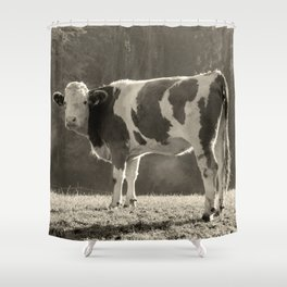 Cow in Field Shower Curtain