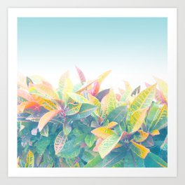 After the rain / Tropical Croton Leaves 4 Art Print