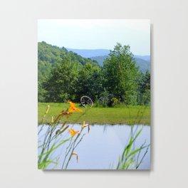 picturesque Metal Print