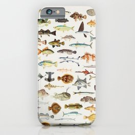 Illustrated Colorful Southern Pacific Exotic Game Fish Identification Chart iPhone Case