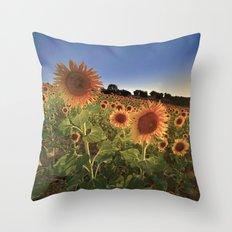 Sunflowers. At sunset. Throw Pillow