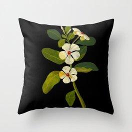 Mary Delany Vinca Rosea Vintage Botanical Art Black Background Realistic Floral Arrangement Throw Pillow