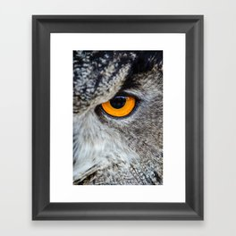 NIGHT OWL - EYE - CLOSE UP PHOTOGRAPHY - ANIMALS - NATURE Framed Art Print