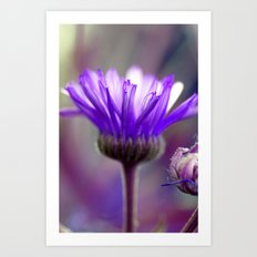 purple flower edit Art Print